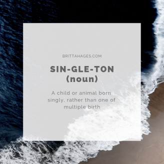 Image of singleton definition.